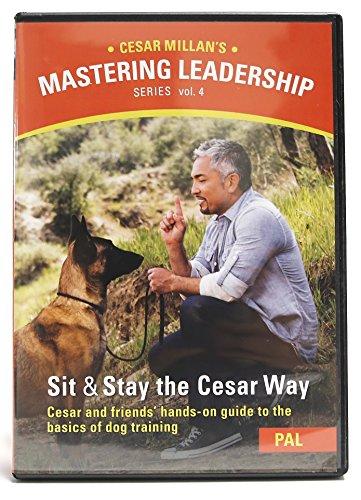 Cesar Millan Mastering Leadership Series Six Dvd Box Set