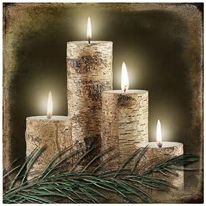 Amazon.com: Ohio Wholesale Radiance Lighted Birch Candle ...