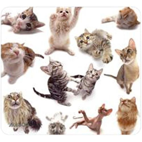 Cat Group Mouse Pad