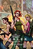 img - for Fables: Deluxe Edition Book Ten book / textbook / text book