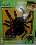 Animal Planet Radio Control Tarantula Children, Kids, Game