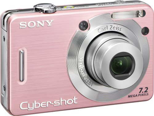 Sony Cybershot DSC-W55 is one of the Best Point and Shoot Digital Cameras for Photos of Children or Pets Under $200