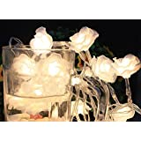 Gorgeouseve 4m 40 LED (Warm White) Lights Rose Shape Warm Feeling Lights String Battery Operated String Lights...