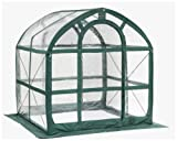 Search : Flower House FHSP300CL SpringHouse Greenhouse, Clear