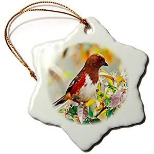 3dRose orn_80225_1 A Female Rufous Sided Towhee Bird Snowflake Porcelain Ornament, 3-Inch