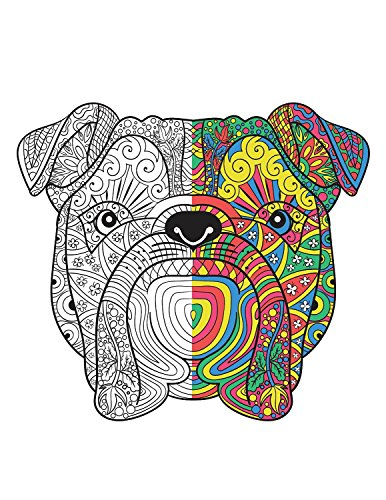 Creatively-Calm-Studios-Adult-Coloring-Books-Set-3-Books-120-Unique-Animal-Scenery-Mandala-Designs-BONUS-Weekly-Designs-For-One-Full-Year