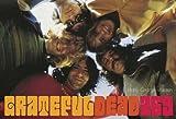 Grateful Dead 365 (0810972824) by George-Warren, Holly