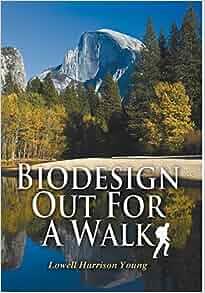 book chinas environmental crisis domestic and