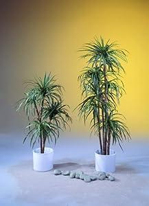 YuccaPalme mit 5 Naturstämmen 180cm, Kunstpflanze  BaumarktKundenbewertung und Beschreibung