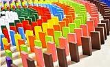 POTATO 1000 ピース 12色の豊富カラー カラフル 木製 ドミノ牌 大容量1000個  【仕掛け付き】
