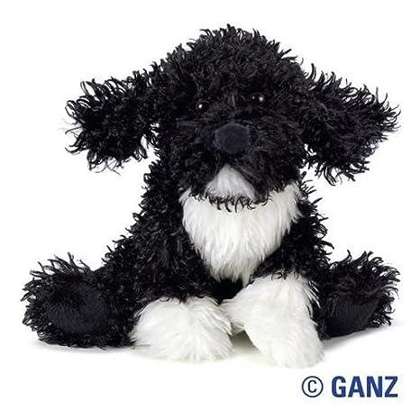 Webkinz Portugese Water Dog