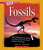 Fossils (True Books)