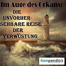 Im Auge des Orkans: Die unvorhersehbare Reise der Verwüstung Hörbuch von Alessandro Dallmann Gesprochen von: Jens Zange