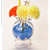 2pcs/lot Fashion Crystal Clear Glass Vase Flower Hydroponic Set Glass Craft