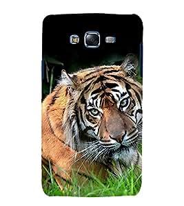 printtech Nature Animal Tiger Back Case Cover for Samsung Galaxy J5 / Samsung Galaxy J5 J500F