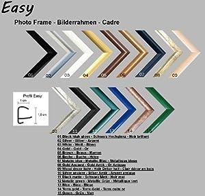 Easy Kunststoff Bilderrahmen 58x82 cm 82x58 cm Farbwahl: hier Gold mit Antireflex-Acrylglas