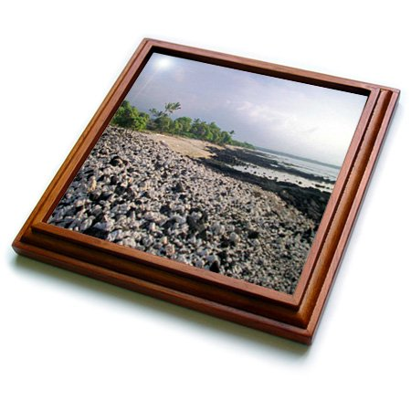 Sandy Mertens Hawaii Travel Designs - Black Sand Beach of Hawaii - 8x8 Trivet with 6x6 ceramic tile (trv_6077_1)