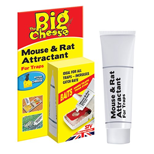 dicoal-stv163-cebo-ratones-y-ratas-15g
