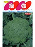 緑嶺   サカタのブロッコリー種です
