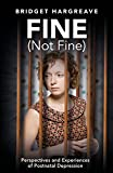 Fine (Not Fine): Perspectives and Experiences of Postnatal Depression