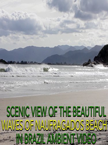 Scenic View of The Beautiful Waves of Naufragados Beach in Brazil Ambient Video