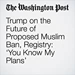 Trump on the Future of Proposed Muslim Ban, Registry: 'You Know My Plans' | Abby Phillip,Abigail Hauslohner