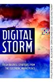 img - for The Digital Storm: Fresh Business Strategies from the Electronic Marketplace by Philipp Gerbert (2001-07-10) book / textbook / text book