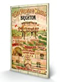 Brighton Volks Electric Railway Wooden Wall Art - Approx 45 x 76 cms (18 x 30 Inches)
