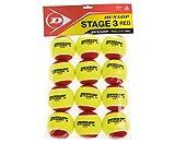 Dunlop Stage 3 Sachet