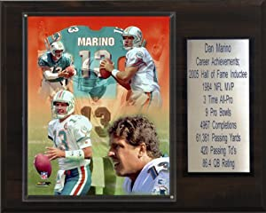 NFL Dan Marino Miami Dolphins Career Stat Plaque