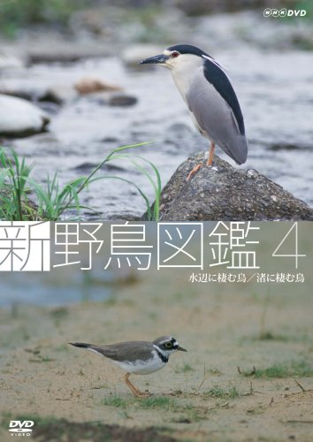 新 野鳥図鑑 第4集 水辺に棲む鳥/渚に棲む鳥 [DVD]
