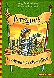 echange, troc Angela McAllister - Amaury, Tome 1 : Le tournoi des chevaliers