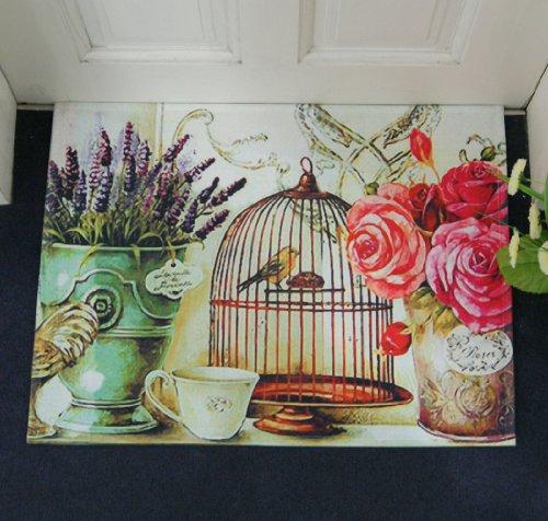 Shabby Chic Retro Vintage Birds In The Birdcage Mew Red Rose Flower Door Mat Floor Rug Decor front-810505