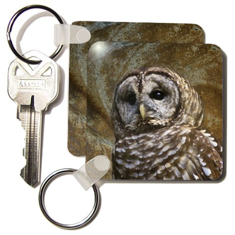 Angel Wings Designs Wildlife - Barn Owl fine art image - home décor - Key Chains