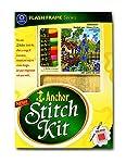 Anchor Stitch Kit Pink Posy