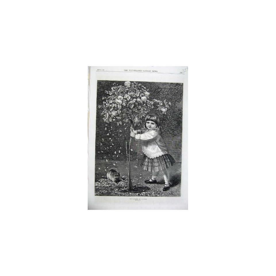 1870 Fine Art Playmates Little Girl Kitten Cat Garden