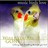 Music Birds Love: While You Are Gone ~ Bradley Joseph