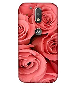 Fixed Price Printed Back Cover For Moto G4 (Multicolor)