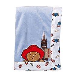 Bear Unisex Blue Velour Framed Receiving Baby Blanket