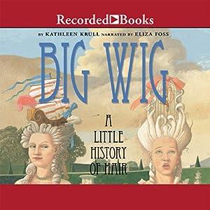 Big Wig Audiobook