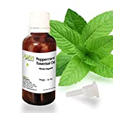 Allin Exporters Peppermint Oil - 30 ML - 100% Pure and Natural - Ideal for Use in Aromatherapy - Excellent Choice for Skin and Muscles - Use in Aroma Diffusers to Eliminate Foul Odors from Interiors