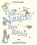 Beatrix Potter The Tale of a Naughty Little Rabbit (Peter Rabbit)