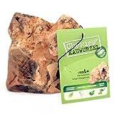 Chewies Kauwurzel L, 1er Pack  circa 350 gm