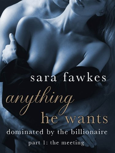 Anything He Wants: The Meeting (#1) by Sara Fawkes