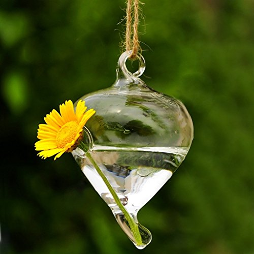 vase suspendu en verre transparent pour plantes fleurs d coration de jardin maison mariage les. Black Bedroom Furniture Sets. Home Design Ideas
