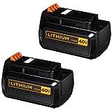 BLACK+DECKER LBXR36-2 40V 2-Pack Lithium Ion Battery