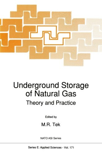 Underground Storage of Natural Gas: Theory and Practice (Nato Science Series E:) (Volume 171)