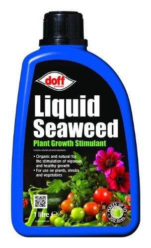 doff-1l-alga-marina-liquido-concentrado-multiusos-fertilizante-