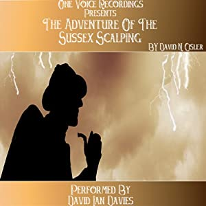 The Adventure of the Sussex Scalping Audiobook