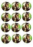 Muffin Aufleger Pferde 02